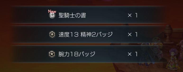 聖騎士.JPG